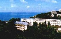Санаторий «Лесная гавань»